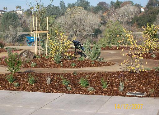 centennial-park-sierra-landscape-39